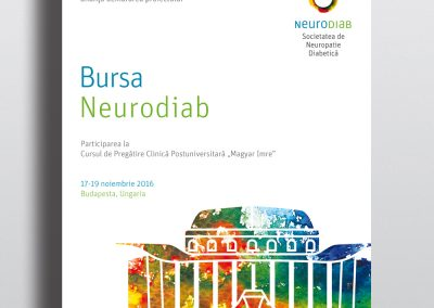 Communication materials for the Neurodiab events