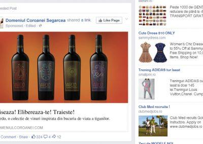 facebook-ad-1