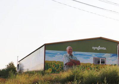 decoration for Syngenta – Agrolegvaro warehouse